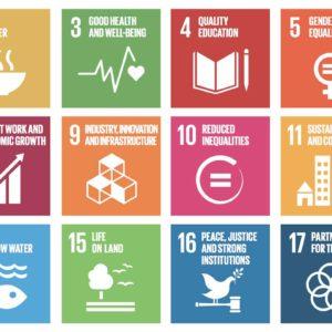 2030 Agenda and the SDGs