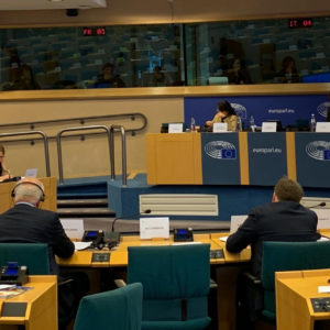 On the EU humanitarian strand at the Parliament