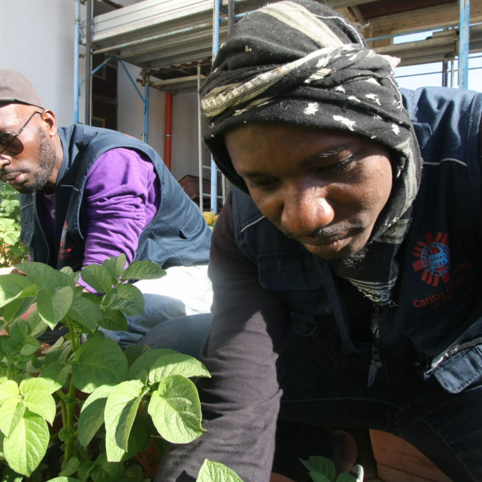 Call to respect migrant farm workers' rights