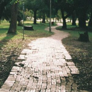 Ecological conversion: walking the talk of Laudato Si'